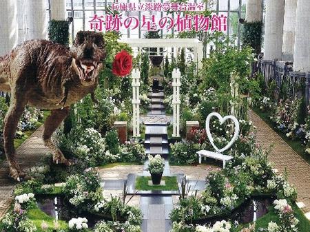 2万本の薔薇が咲き誇る!淡路夢舞台「薔薇祭」